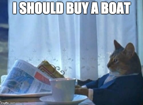 Cat buying a boat